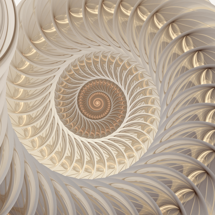 Life in Harmony WA bigstock-Abstract-Fractal-Spiral-Shell-800_800 Kite Meditation